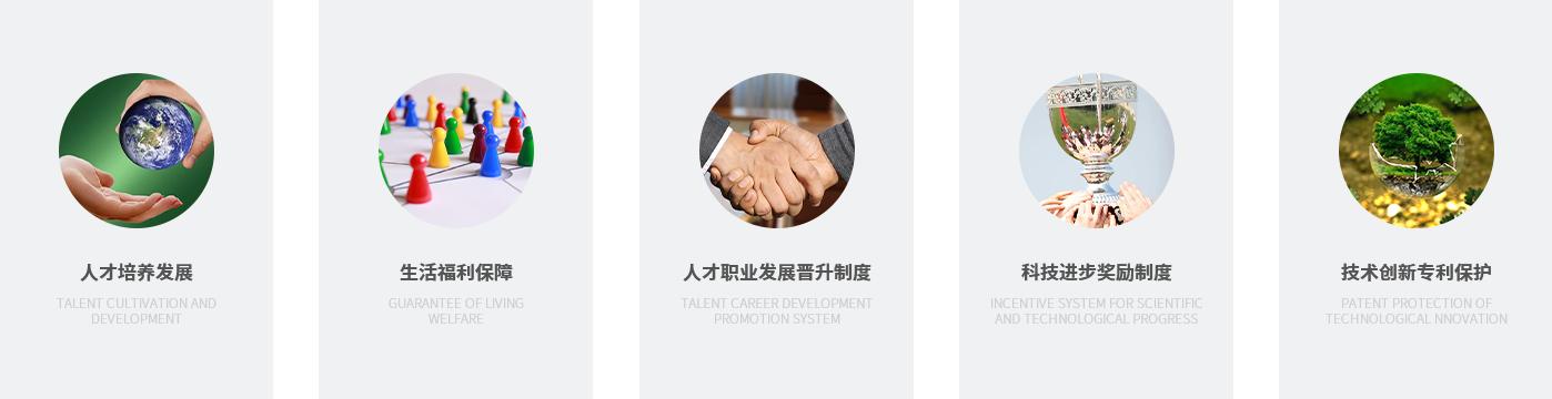 Talent Concept(图3)